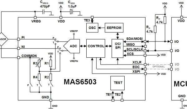 MAS6503